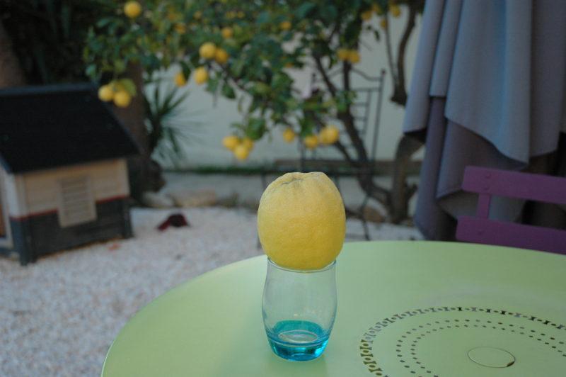 Citron pour la citrnnade