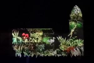Image du spectacle Collioure couleurs